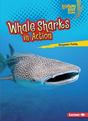 Whale Sharks in Action (Lightning Bolt Books: Shark World)