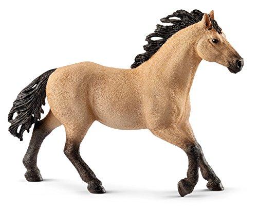 Quarter Horse Stallion ()