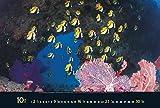 Waterworld 2016. PhotoArt Panorama Kalender