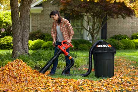 Amazon Com Worx Wa4054 1 Leafpro Universal Fit Leaf