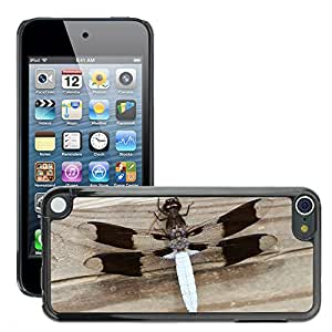 Super Stella Slim PC Hard Case Cover Skin Armor Shell Protection // M00105834 Insect Wing Wildlife Bug Small Wild // Apple ipod Touch 5 5G 5th