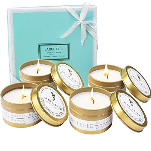 Vanilla Soy Candle French (LABELLEFEE Scented Candles Soy Wax Travel Tin Candles - Candle Set for Aromatherapy, Festival - Lemongrass Bergamot, Sea Salt Sage, French Lavender Vanilla, Mediterranean Amber - 4 Pack)