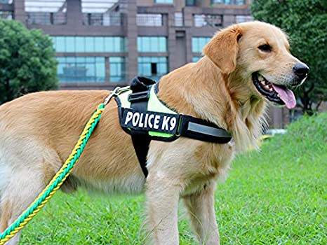 panrock® Ajustable Nylon Collar de perro arnés con asa y ...