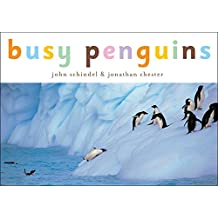 Penguins!: A Busy Animals Book