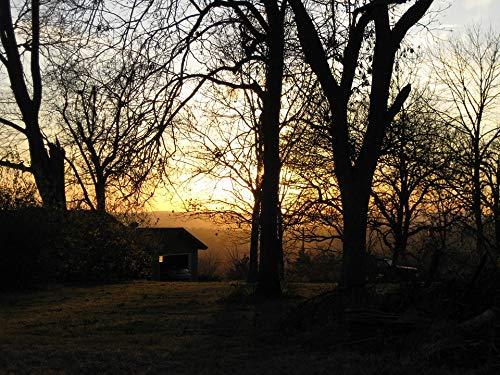 Peel-n-Stick Poster of Fall Sunset Estate Autumn Home Oregon Illinois Vivid Imagery Poster 24 x 16 Adhesive Sticker Poster Print