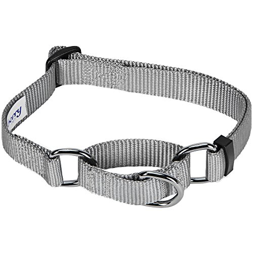 Blueberry Pet 19 Colors Safety Training Martingale Dog Collar, Flint Gray, Medium, Heavy Duty Nylon Adjustable Collars for Dogs