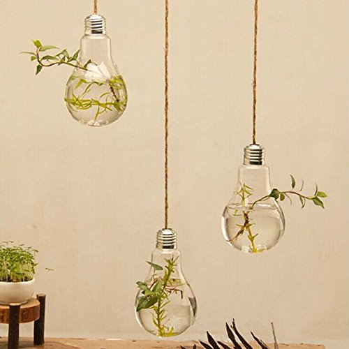 Boshen Flower Hanging Bulb Vase Plant Terrarium Container Glass Home Wedding Décor (Bulb Shape/Diameter 8CM(3PCS)) (Bulbs Containers Plant)