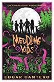 Book cover from Meddling Kids: A Novel by Edgar Cantero