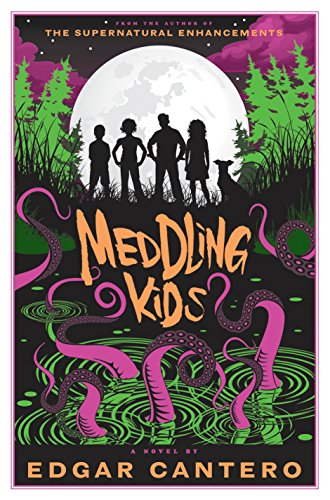 Meddling Kids: A Novel ()