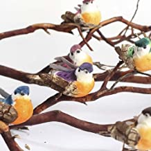 Package of 12 Assorted Colored Woodland Mushroom Birds on Clip for Decorating Crafting and Embellishing