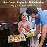 Parchment Paper Roll for Baking, Firstake Non-Stick
