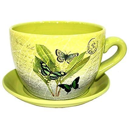 Amazon.com: GR8 Garden Decorative Novelty Terracotta Tea Cup ...