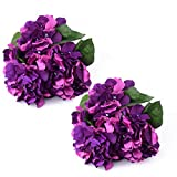 oasis blue flower petals - 2 x Premium Silk Hydrangea Bouquets – 10 Large Artificial Fake Flower Heads for Your Home & Office Arrangements or Rustic Wedding Decor (Purple)