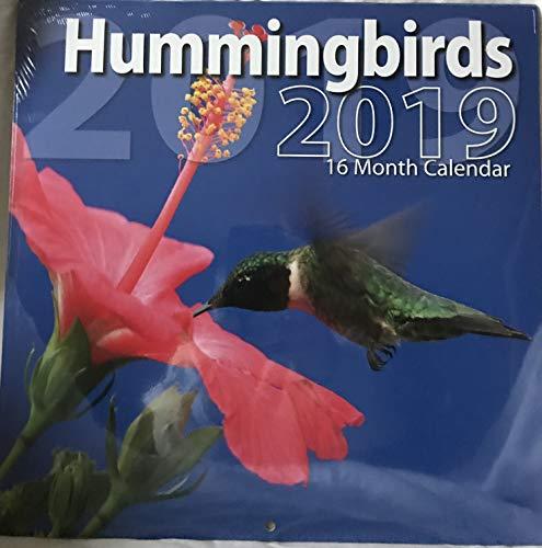 2019 Hummingbirds 16 Month Wall Calendar