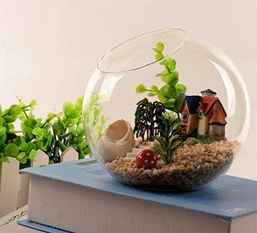 Cratone Vases Hanging Planter Glass Air Plant Terrarium Kit Home Decorations for Succulent Tealight by Cratone (Image #3)