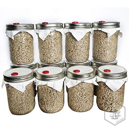 12 BRF Jar Organic Brown Rice Flour Cake Mushroom Substrate Sterilized
