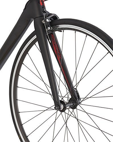 Schwinn-Fastback-Carbon-Road-Bike-Matte-Black