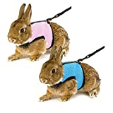 Calunce Soft Rabbits Harness with Leash 2 PCS (blue & pink)