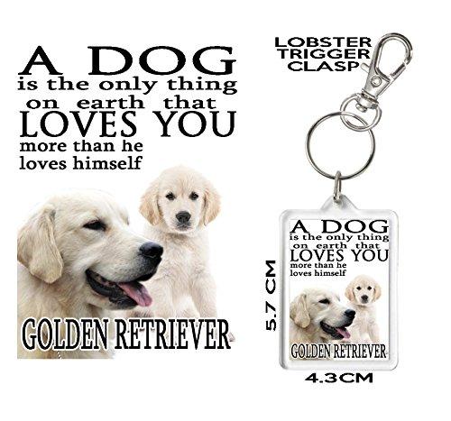 Golden Retriever llavero, un perro Loves You. Puede ser ...