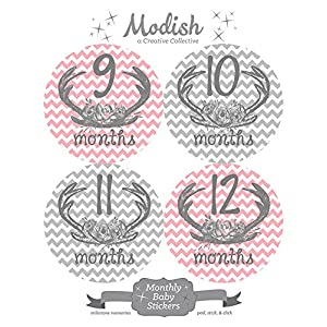12 Monthly Baby Stickers, Deer Antlers, Flowers, Baby Girl, Baby Belly Stickers, Baby Month Stickers, First Year Stickers Months 1-12, Pink, Grey, Gray, Chevron, Deer Antlers, Girl 4