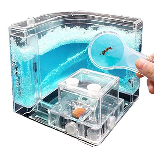 NAVADEAL Ant Farm Castle for Kids - Habitat Educational & Science Kit Toy - Allows Study of Ant