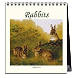 Rabbits 2019 Calendar (Animals)