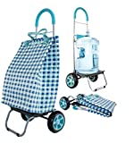 dbest products Trolley Dolly Basket Weave Tote, Blue Shopping Grocery Foldable Cart Picnic Beach