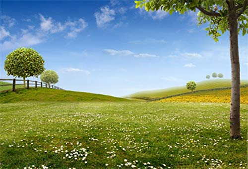 CSFOTO 7x5ft Background Spring Meadow Florets Photography Backdrop Farmland Nature Scenery Springtime Hill Leisure Holiday Outdoors Picnic Tour Vacation Photo Studio Props Polyester Wallpaper ()