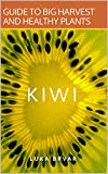 Kiwi: Guide to big harvest and healthy plants