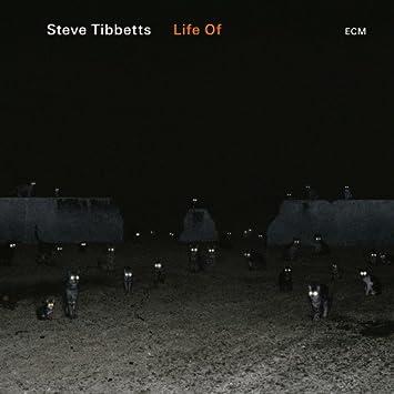 Image result for Steve Tibbetts- Life Of