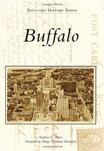 Buffalo (Postcard History) - Buffalo Stores Ny