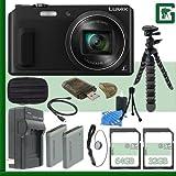 Panasonic Lumix DMC-ZS45 Digital Camera (Black) + 32GB + 64GB Green's Camera Bundle 2