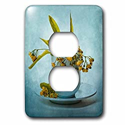3dRose Alexis Photography - Still-Life - Bunch of lime or linden flowers in a white cup. Stylized photo - Light Switch Covers - 2 plug outlet cover (lsp_271941_6)