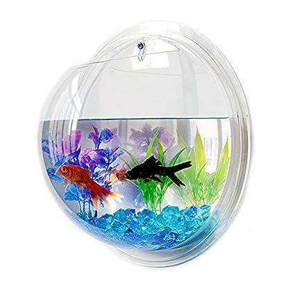Cuenco de peces de acrílico transparente para colgar en la pared, acuario, acuario,