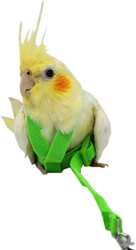 Bird Leash Cuerda de Paseo Arnés Y Correa para Loro Cacatúa Pájaros Mascota Pájaro Loro Arnés Y Correa Cuerda para Pájaros Suministros de Entrenamiento 2 M