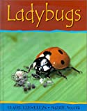 Ladybugs, Claire Llewellyn and Barrie Watts, 0531146545