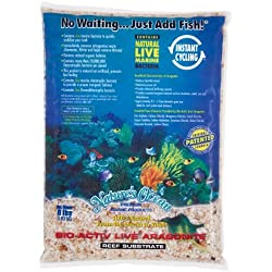 Worldwide Imports AWWA10721 Live Aragonite Substrate, 16-Pound