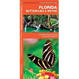 Florida Butterflies & Moths: A Folding Pocket Guide to Familiar Species (A Pocket Naturalist Guide)