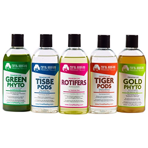 5 Bottle Package - Tisbe Pods, Tigriopus Pods, Marine Rotifers, Green Phyto(Nannochloropsis Oculata) and Gold Phyto(Isochrysis Galbana) (Pods Tigger)