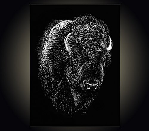 "Lithograph print""Rufus"" A pen and ink on scratchboard drawing of a portrait of an American buffalo/bison"