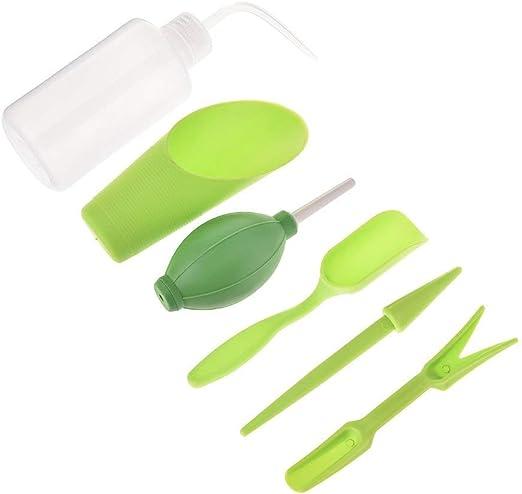 Herramientas de plantas, 6 piezas Mini herramientas de trasplante de jardín Set Herramientas de mano de jardín Set plantas suculentas Bonsai Conjunto de herramientas de plantas de interior (Green): Amazon.es: Jardín