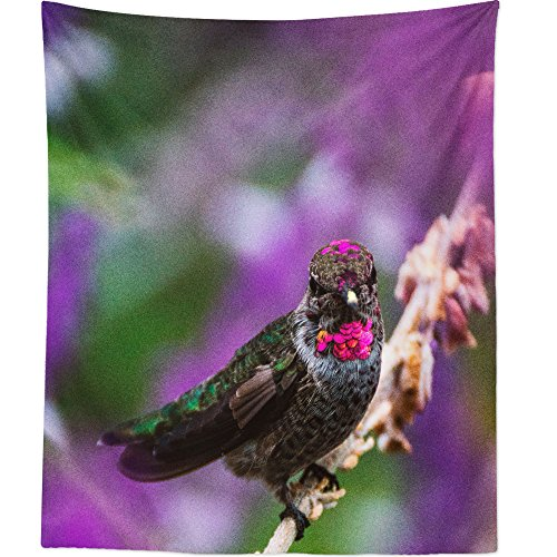Blossom Hummingbird Hanging Feeder (Westlake Art - Wall Hanging Tapestry - Bird Perched - Photography Home Decor Living Room - 26x36in)