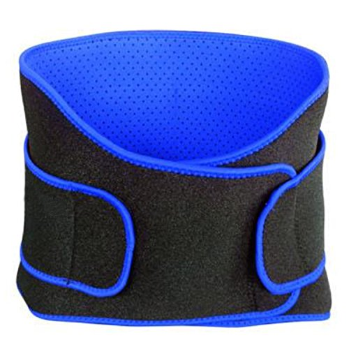 Waist Trimmer Belt Support Brace, Adjustable Lower Back Lumbar Support Straps - Weight Loss Ab Belt, Breathable Stomach Wrap Waist Trainer (Black and Blue) (Weight Moves Yoga For Loss)