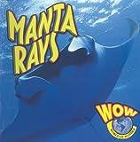 Manta Rays, Judy Wearing, 1605961051