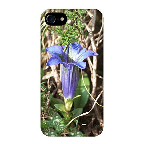 Coque Apple Iphone 7 - Gentiana asclepiadea L