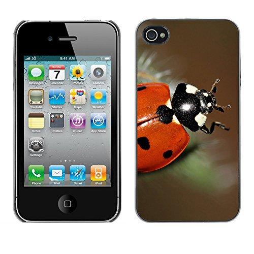 Premio Sottile Slim Cassa Custodia Case Cover Shell // F00008722 bettle // Apple iPhone 4 4S 4G