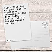 Mr Mrs Panda Postkarte Mit Spruch Einem Tier Ist Es