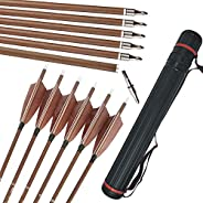 """ZSHJGJR 31 Inch Archery Carbon Hunting Arrows with 4"""" Turkey Feather Targeting Practice Arrows Spine 340 400 5"""