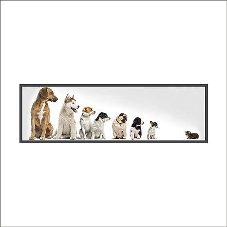 Amazon Com Boodecal 3d Cute Dog Cat Wall Sticker Decal Mural Art