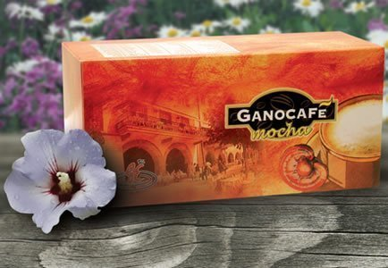 6 Boxes - GANO CAFE Mocha COFFEE WITH GANODERMA HEALTHY COFFEE (90 Sachets/6 BOXES) by Gano